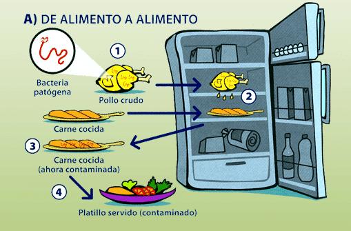 contaminación cruzada alimentos